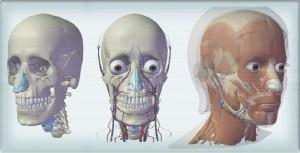Vyzkoušejte demo Visible Body od Argosy Publishing.